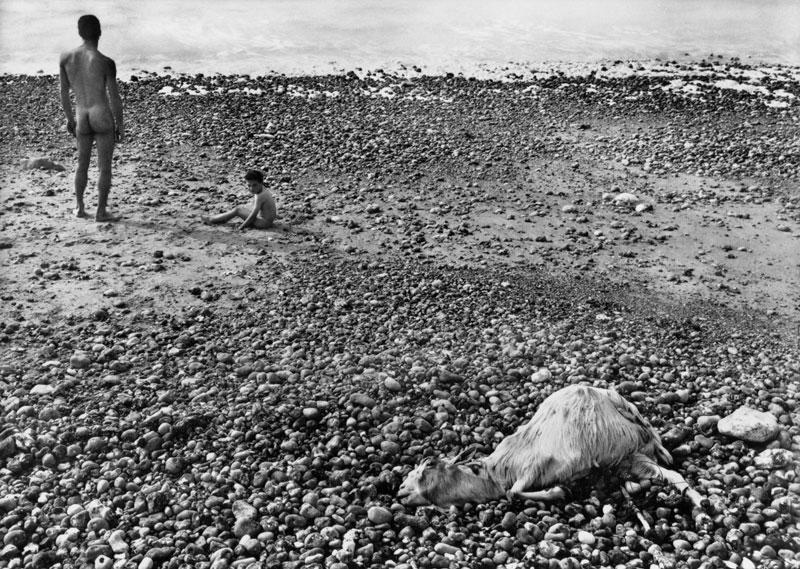 ULYSSE, Agnès Varda, 1982