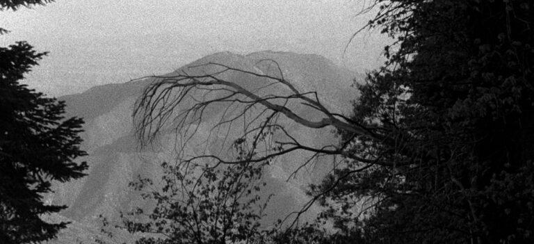 John Skoog - Shadowland